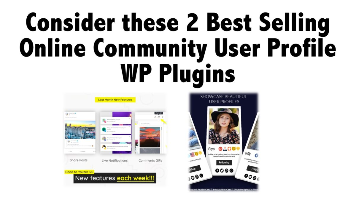 Consider these 2 Best Selling Online Community User Profile WP Plugins