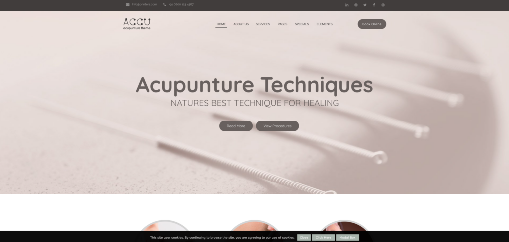 2.  Accu - Healthcare, Massage WordPress Theme
